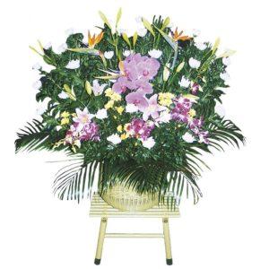 ダルマ籠盛花